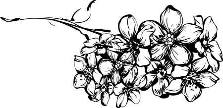 blackly: sketch one sprig with little flowerets