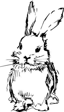draw a sketch: a image of a rabbit with long ears