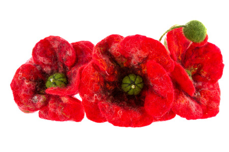 a hoop on the head of red poppies and daisies photo