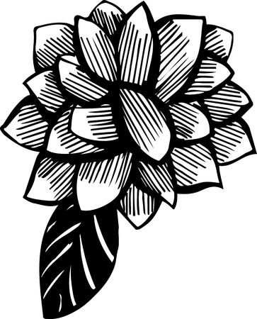 vegetative: black and white sketch of a vegetative ornament