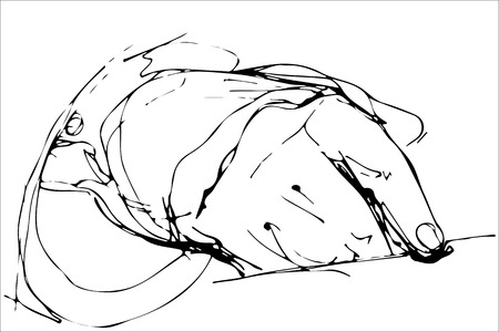 unrecognizable person: vector sketch of a finger of the hand on the table
