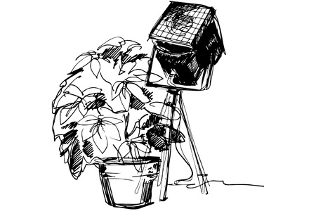 black and white sketch of the indoor flower in a pot near the theater spotlight