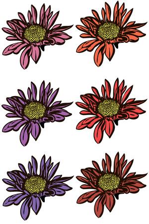 imagem do vetor de uma flor de crisântemo bonito do outono