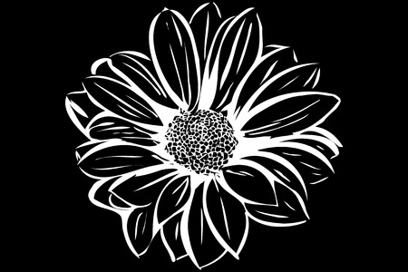 plant delicate: vector image of a beautiful blooming flower garden