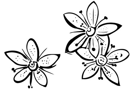 black and white vector sketch blooming beautiful flower