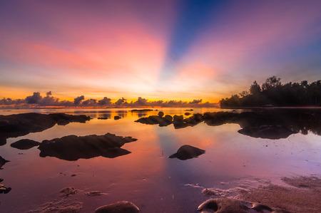 Sunrise tips of borneo photo