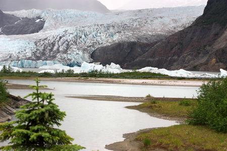 glacier national park: Mendenhall Glacier National Park in Juneau Alaska