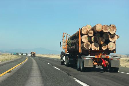 道路上にある木材を運ぶ大きいトラック