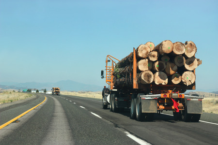 Large truck transporting wood on the road photo