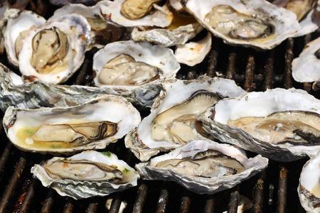 ostra: Las ostras en la parrilla Foto de archivo