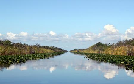 everglades: Beautiful lake landscape in Everglades Florida