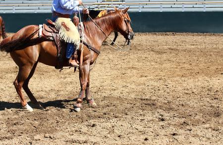reigns: Cowboy on horse in empty stadium