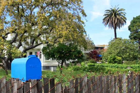 got: Bright blue mailbox in quiet neighborhood