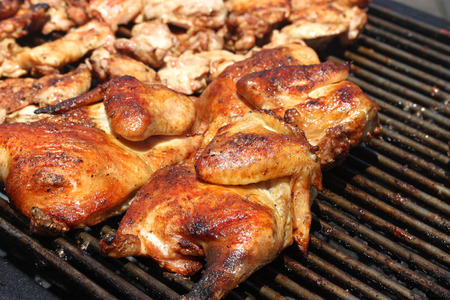 Juicy Chicken on Barbeque Grill Standard-Bild