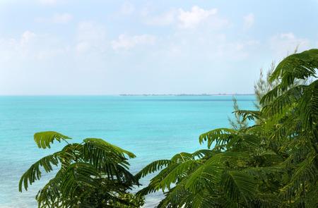 Scene of beautiful tropical island