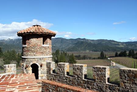 Top of old castle in rural vineyard