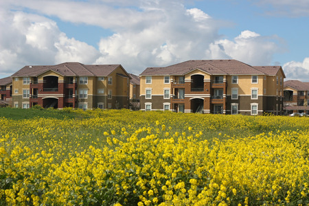 Row of apartments near spring field