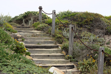 coastline: Wooden stairs on a coastline