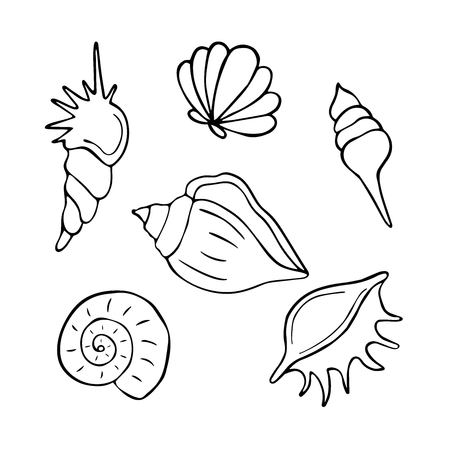 Hand drawn sea shells collection. Marine illustration for coloring books. Shellfish outlines isolated on white background. Vector illustration. Ilustração