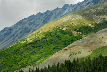 The mountains are colorful landscape in Alaska 版權商用圖片
