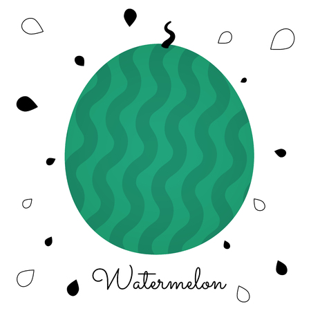 Striped watermelon on a white background with seeds and text. Vector illustaration for posters, cards, invitations, flyers, ect. Ilustração