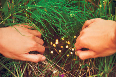 Female hands pushes back the thickets of grass behind which are hiding magical fairy lights
