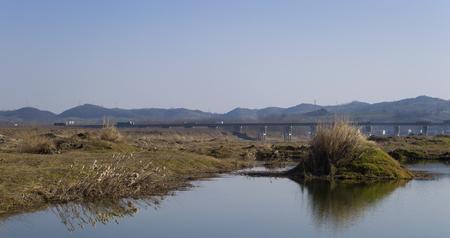 Wetland scenery