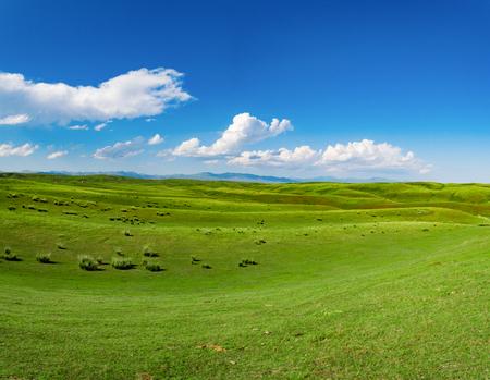 sub-plateau grassland scenery Stock Photo