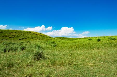 sub-plateau grassland under blue sky and white clouds