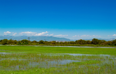 sub-plateau grassland wetland under blue sky and white clouds