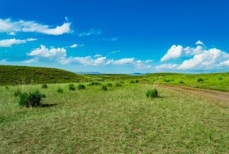 Grasslandsub-plateau grassland under blue sky and white clouds Stock Photo
