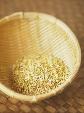 fennel seeds: fennel seeds