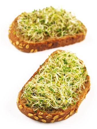 alfalfa sprouts sandwich Stock Photo - 7912102