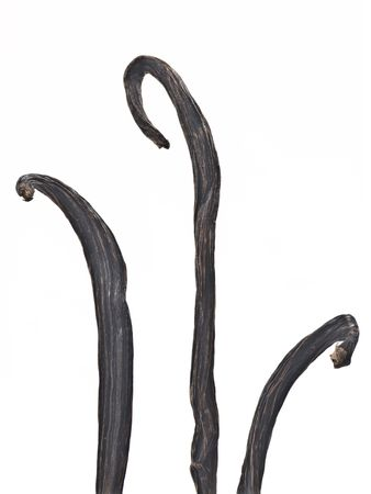 vanilla pods Stock Photo - 8100374