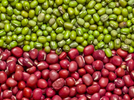 red and green mung beans Stock Photo - 8810984
