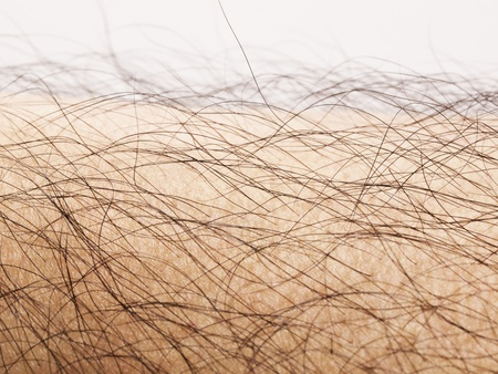 close up of human body hair