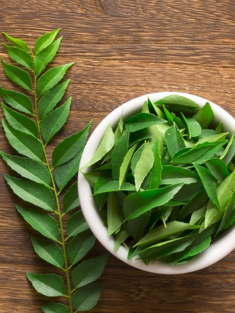close up of fresh indian curry leaves Stockfoto