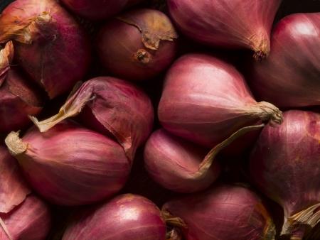 zwiebeln: Nahaufnahme von Schalotten Lebensmittel Hintergrund