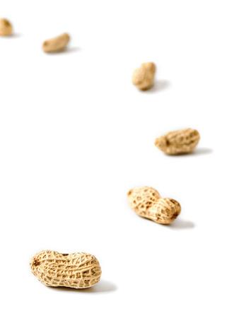 inducement: peanut trail motivation concept