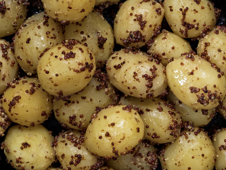 spud: close up of rustic boiled potato in mustard food background Stock Photo