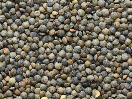 lenteja: close up of dried french green puy lentil food background