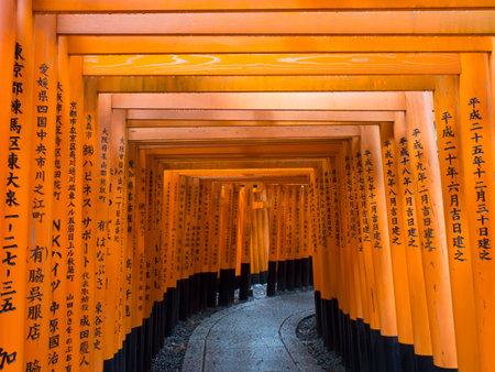 shinto: japanese shinto shrine torii gates