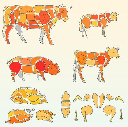 Vector plan pour couper la viande