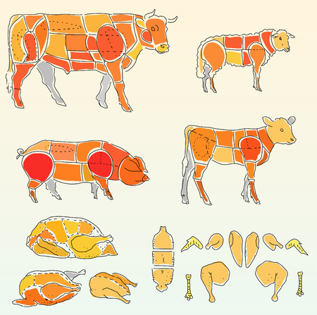 ewe: vector plane for cutting meat
