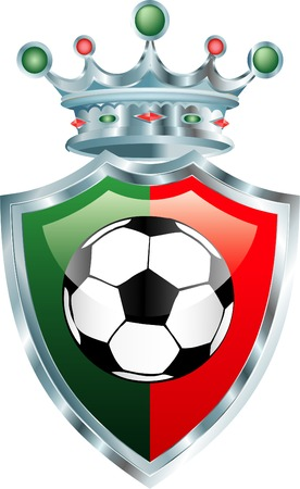 shinning: vector illustration with soccer ball on portuguese colors