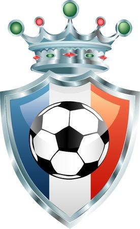 shinning: ilustraci�n vectorial de la pelota de f�tbol en franc�s bandera  Vectores