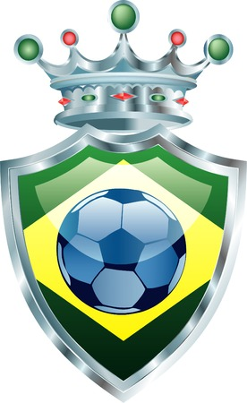vector illustration of the soccer ball on brazil flag
