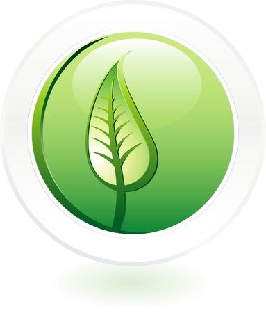 vector leaf button Vector