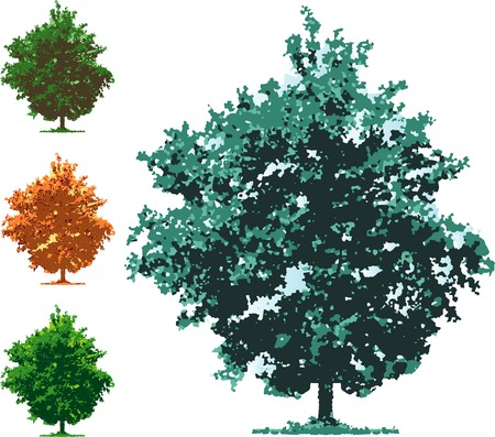boron: vector tree in four seasons