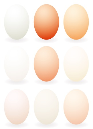 vector nine eggs in different colors Stock Vector - 4348174